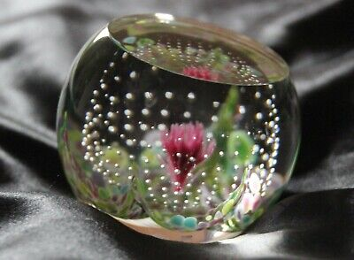 Caithness Glass Paperweight Y56387 Coral Flower 'Limited Edition' • 39.99£