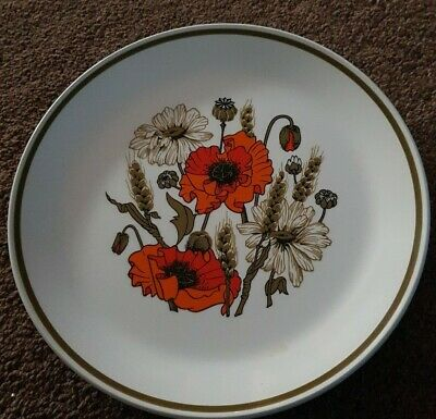 J & G Meakin Studio 'poppy'  Design Dinner Plates • 10£