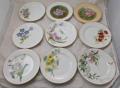 9 X Antique Limoges French Flower Plates - 23cm - Excellent • 34.99£