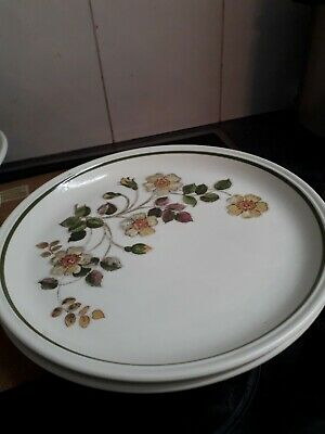 M&S MARKS & SPENCER – AUTUMN LEAVES DINNER PLATES X 2 - 27cms, Hardly Used • 7.10£