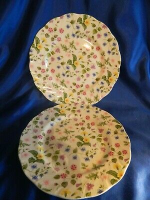 Queens Country Meadow   Dinner Plates  27 Cm • 20£