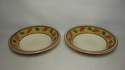 2 X STAFFORDSHIRE SAVANNAH 6 3/4  CEREAL BOWLS IN VERY GOOD CONDITION • 10.50£