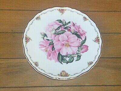 Royal Albert  Camellia  Plate With Certificate • 7£
