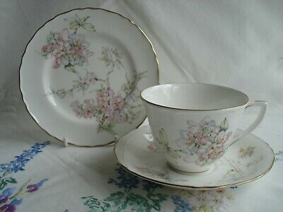 Beautiful Royal Worcester  Caprice  Pattern Bone China Tea Cup Saucer & Plate #2 • 8.50£