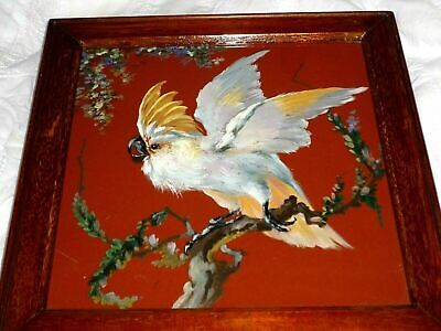 A Superb Mintons Plaque Painted By William Mussill Of A Cockatoo C1880 • 10£