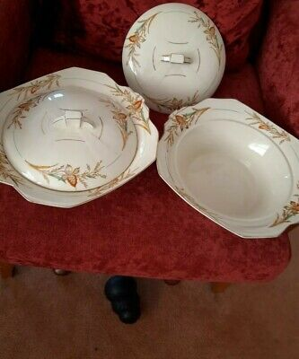 Alfred Meakin Pottery Turins • 6.50£