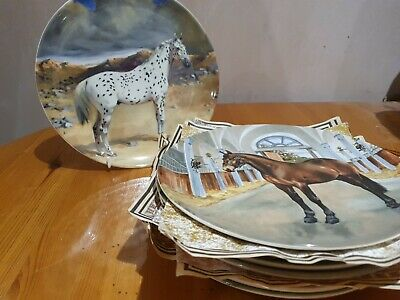 Spode  Noble Horse Collection  - 10 In Total • 39.99£