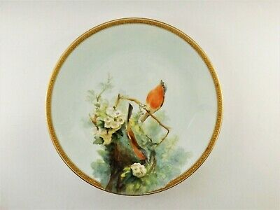 Antique Royal Worcester Hand Painted Plate With Birds Nestling Dated 1874 R288/2 • 170£
