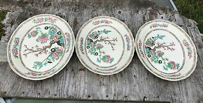 Creampetal Tunstal Pottery Indian Tree Collection Serving Platter * • 24.99£