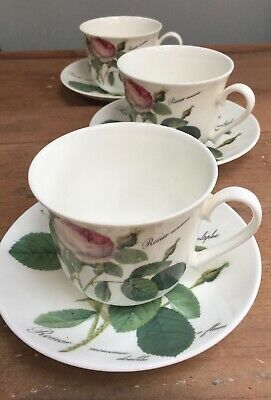 SET Of 3 'ROY KIRKHAM' LG BREAKFAST CUPS & SAUCERS  -  REDOUTE ROSES  • 80£