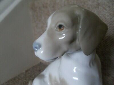 Lladro Uncatalogued ?,rare Dog Sitting Early Pre 1970 Backstamp,stunning Find • 50£