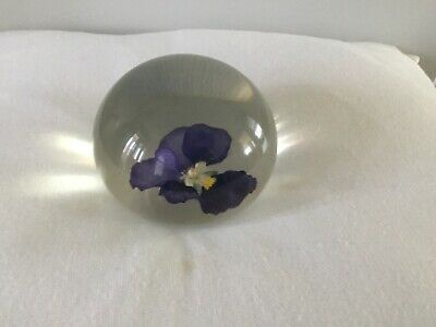 Tarax Of Canada Paperweight Blue Pansy 8 Cm D Country Garden Lovers • 15£
