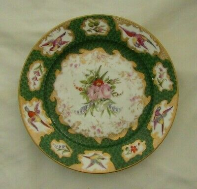 Early Worcester Style Plate, Hand Painted With Exotic Birds & Flora • 15£