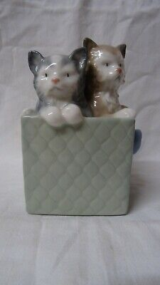 Nao Kittens In A Box • 5£