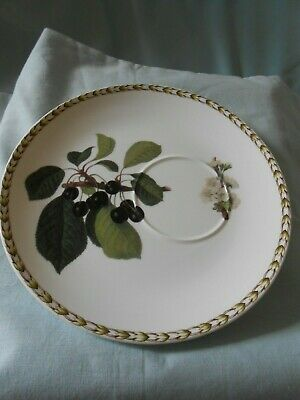 Queens Hookers Fruit  China Oddments 1 Cup (pears) And 1 Plate/saucer (Cherries) • 5£