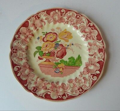 Royal Doulton Pomeroy Plate From Davenport Engravings • 12£