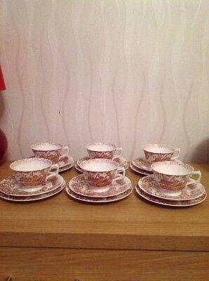 ROYAL CROWN DERBY 'Brown Aves' Cup, Saucers And Plates  Excellent Condition. • 150£