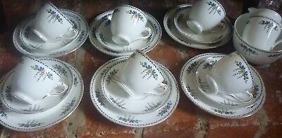 Tuscan 1920's/1930's 20 Piece China Tea Set. Hand Painted • 9.99£