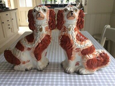 Pair Of Antique Staffordshire Dogs  • 65£