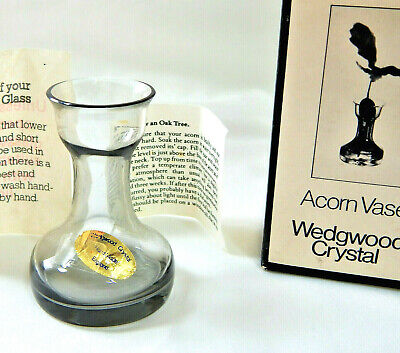 Acorn Vase How To Grow An Oak Tree Wedgwood Glass Midnight Grey FJT40 1983 Boxed • 65£