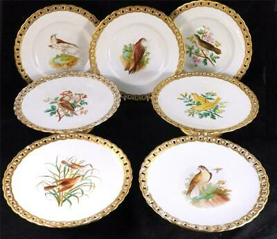 C19thc Antique English Porcelain Ornothilogical Dessert Service Birds • 299.99£