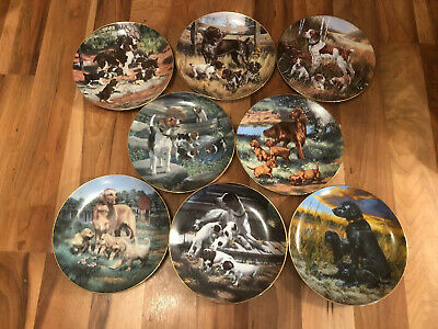 Gorgeous Set Of 8 Robert Christie Classic Sporting Dogs Wall Plates • 59.99£