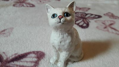 Beswick, Persian Kitten-seated, Looking Up, Model 1886, 1963-1989. A • 9£