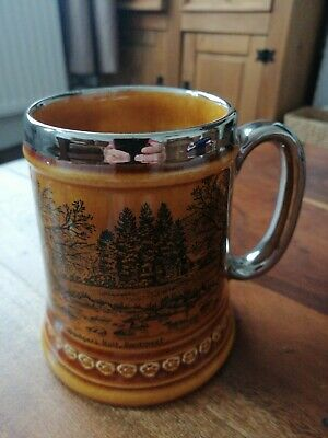 Vintage Lord Nelson Tankard.. Badgers Holt • 2.99£