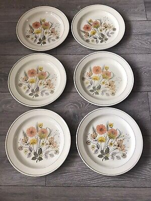 J & G Meakin Trend Hedgerow  6 Dinner Plates 10 Inches Vintage • 12.50£