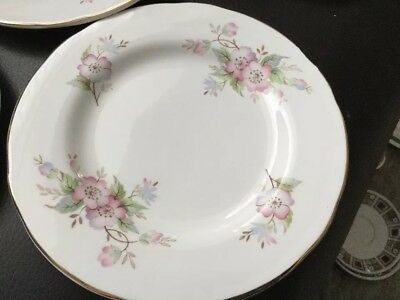 Crown Trent China Staffordshire Flower Side Plate 16.5cm Diameter • 3.45£