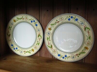 Lovely Villeroy & And Boch EDEN Dinner Plates X 2 Good Condition • 20£