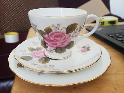 Vintage Pretty Duchess Pink Fern Rose  Bone China Teacup Saucer Side Plate Trio • 5.99£