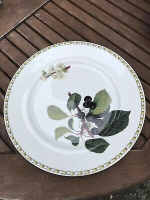 Queens Hookers Fruit Dinner Plate Vgc • 10.99£