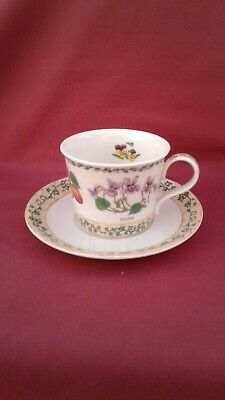 Dunoon  Nature Trail Cup/saucer Richard Partis Ivy Violets Pansy Fruit Hips VGC • 0.99£