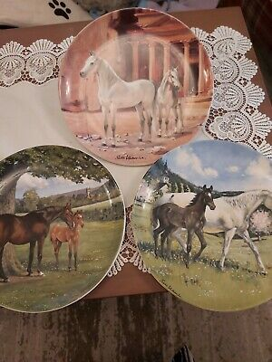 Spode Horse Plates X3 With Certificates  • 12.99£