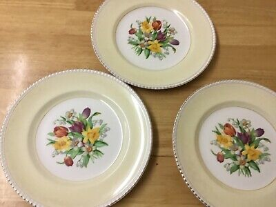 SOLIAN WARE SIMPSONS POTTERY SPRING FLOWERS DINNER PLATES Diameter 10 Inches  • 15£