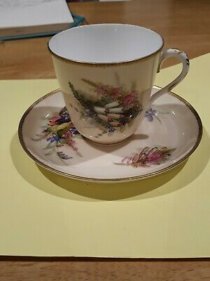 C1877 Hand Painted Worcester Porcelain Cup And Saucer • 19.99£
