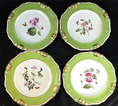 SET OF 4 ANTIQUE BLOOR DERBY DINNER PLATES APPLE GREEN BOTANICAL BUTTERFLY E • 99.99£
