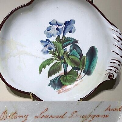 Don Pottery C1810 Betony Dragons Head Dessert Dish From Curtis Botanical Mag • 28£