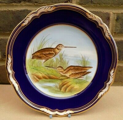 SPODE Hand Painted Game Bird Series Plate - Snipe • 21.99£