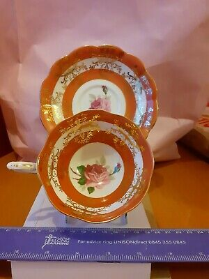 Royal Standard Duo Cabbage Rose Cup & Saucer Banded Colours • 21£