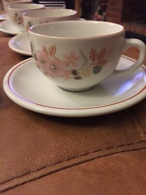 Boots Hedge Rose Pottery  X8 Cups And Saucers • 30£
