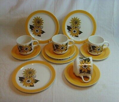 Vintage Retro Barratts Of Staffordshire Tanya Pattern Cups Saucers Plates 1970's • 16.99£