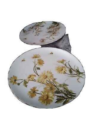 Antique Pair Of George Jones Daisy's And Bees Plates Rd. No.826 • 28£