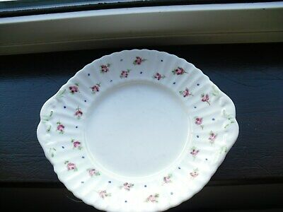 Antique / Vintage Hand Painted Dinner Plate - Flowers - Ribbed Design • 6£