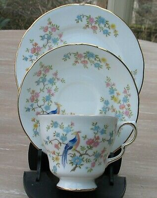 Vintage English Queen Anne Trio Tea Cup Saucer Plate Enchanted Garden Teaware • 9.99£