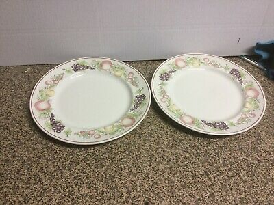 Boots Orchard Dinner Plates X2 • 13.99£