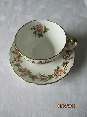 Vintage Royal Adderley Pottery China Cup And Saucer (maybe Briar Rose?) • 13£
