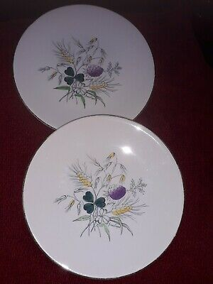 James Cooper 'Field Fare' 2 Hand Painted,Washington Pottery Hanley, 9'' Plates. • 6.99£