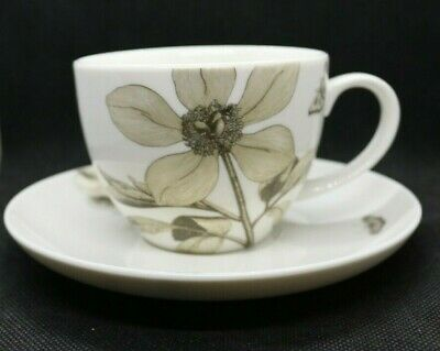 Sanderson Queens Dining Fine China Cup & Saucer In Etchings And Roses Design • 17.95£